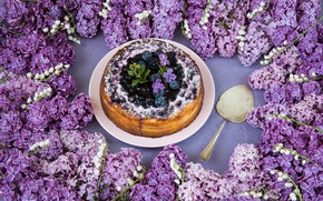 Picture flowers, berries, cake, dessert, lilac