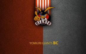 Picture wallpaper, sport, logo, baseball, Yomiuri Giants