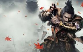 Picture leaves, fog, the game, Japan, wolf, sword, sword, art, action, prosthesis, wolf, samurai, sinobi, from …
