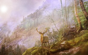 Picture forest, landscape, mountains, nature, deer