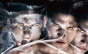 Picture look, the series, guy, werewolf, Teen wolf, The cub, Scott