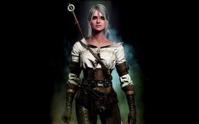 Picture The Witcher 3 Wild Hunt, The Witcher 3 Wild Hunt, Swallow, CRIS, Cirilla Fiona Elen …