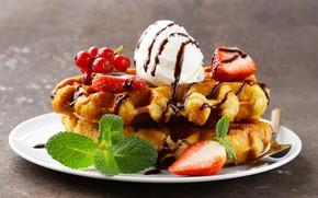 Picture berries, ice cream, dessert, waffles, dessert, Ice cream