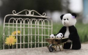 Picture grass, nature, childhood, background, black and white, toy, the fence, bear, bear, Panda, track, stroller, …