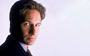 Picture Fox, the series, The X-Files, Classified material, Малдер