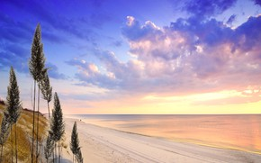Picture beach, ocean, seaside, bay