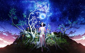 Picture the sky, girl, night, branches, tree, the moon, stars