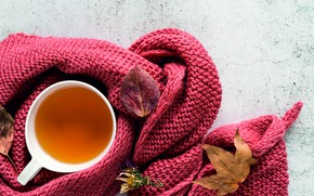 Picture autumn, leaves, heat, tea, Cup, autumn, knitting, knitted thing