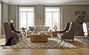 Picture design, style, interior, living room, harmony living room, high def classic