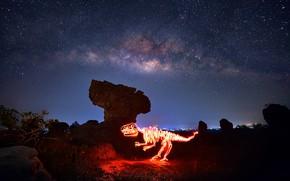 Picture light, night, dinosaur