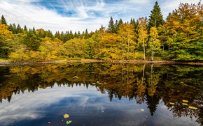 Picture autumn, forest, clouds, reflection, shore, pond, Golden autumn, mirror