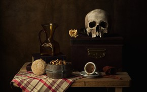 Picture flower, style, the dark background, table, rose, books, skull, towel, mug, pitcher, chest, nuts, still …