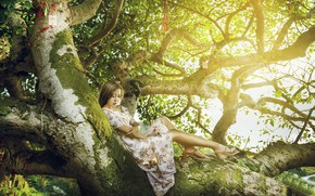 Picture girl, nature, tree