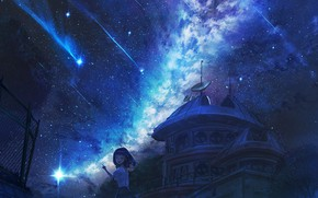 Picture girl, night, the milky way, Observatory, Starfall
