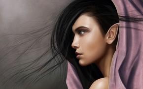 Picture hair, elf, art, ear