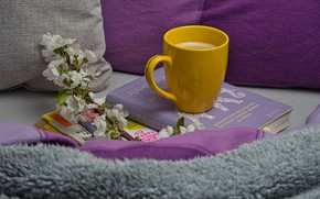 Picture flowers, coffee, branch, pillow, Cup, book