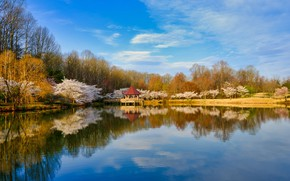 Picture autumn, forest, the sky, water, the sun, clouds, trees, lake, Park, reflection, gazebo, Virginia, Lake …