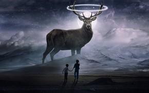 Picture space, fiction, deer, beautiful, space, fantastic, dear, beatiuful