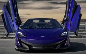 Picture McLaren, door, supercar, front view, Spider, 2019, 600LT, Lantana Purple