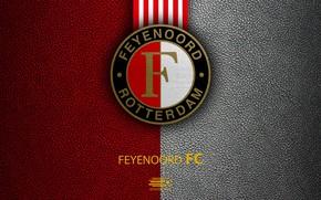 Picture wallpaper, sport, logo, football, Feyenoord, Eredivisie