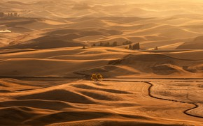 Picture autumn, light, mountains, tree, hills, desert, Oregon, USA, relief