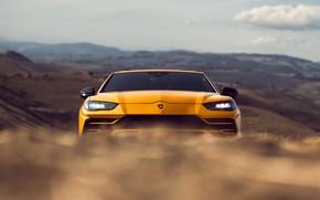 Picture Lamborghini, 2018, Urus