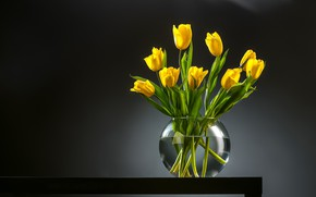 Picture background, bouquet, tulips, vase, buds, yellow tulips