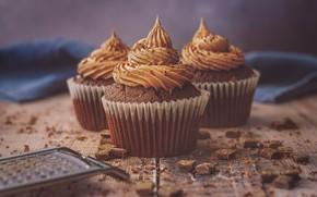 Picture chocolate, cream, cupcakes, chocolate, grater, cupcakes