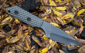 Picture leaves, knife, edged weapons