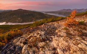 Picture landscape, mountains, nature, river, hills, morning, Kolyma, Maxim Evdokimov