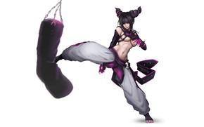 Picture Girl, Art, Style, Illustration, Street Fighter, Minimalism, Juri, Juri Han, Punch, Figure, Punching bag, YUNG-CHI …