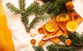 Picture branches, oranges, cookies, Christmas, New year, needles, composition, cutting Board