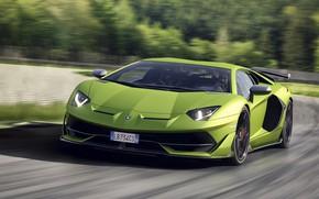 Picture speed, Lamborghini, supercar, 2018, Aventador, SVJ, Aventador SVJ
