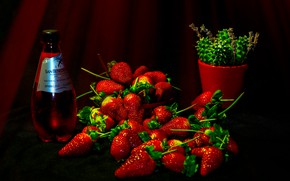 Picture red, berries, the dark background, wine, bottle, cactus, strawberry, fabric, pot, bowl, black background, still …