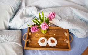 Picture flowers, cappuccino, hyacinths
