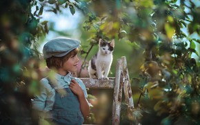 Wallpaper branches, tree, mood, boy, baby, cap, kitty, Apple, ladder