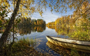 Picture forest, summer, lake, boat