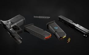 Picture Austria, Glock 21, 45ACP, Self-loading pistol