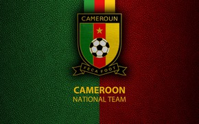 Picture wallpaper, sport, logo, football, National team, Cameroon