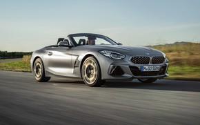 Picture field, asphalt, grey, movement, BMW, Roadster, BMW Z4, M40i, Z4, 2019, G29