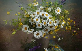 Wallpaper bouquet, chamomile, summer