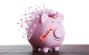 Picture party, money, wedding, savings