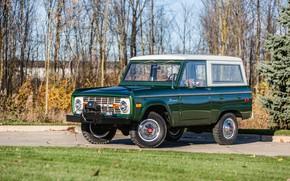 Picture Ford, Wagon, 1974, Bronco, winch