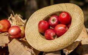 Picture light, apples, hat, red, wood, fruit