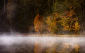 Picture autumn, forest, light, trees, nature, fog, lake, river, shore, foliage, morning, ate, birch, pond, autumn