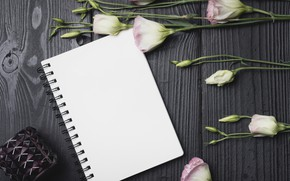 Wallpaper flowers, bouquet, wood, flowers, purple, eustoma, eustoma