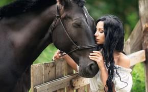 Picture summer, girl, nature, animal, horse, the fence, brunette, shoulder, curls, Anastasia Barmina, Anastasia Barmina