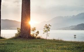 Picture the sun, mountains, trunk, pond, Gartenrast