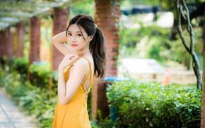 Picture look, girl, pose, sweetheart, dress, Asian, bokeh