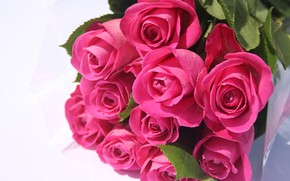 Picture romance, roses, bouquet, pink roses, Valentines, bouquet of pink roses
